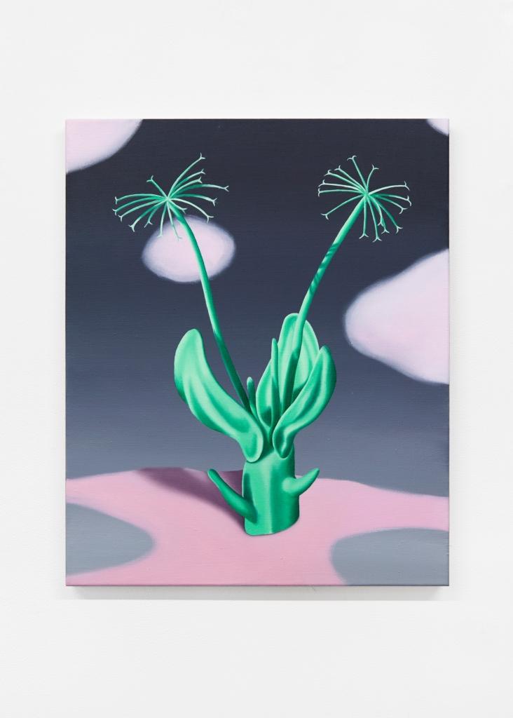 jane_plants_ 1