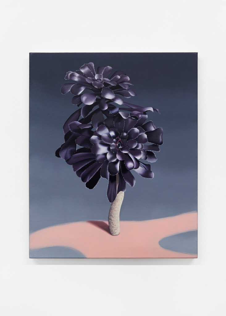 jane_plants_ 15