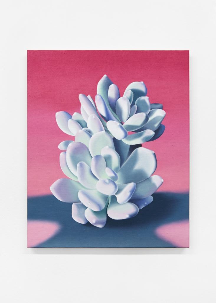 jane_plants_ 6