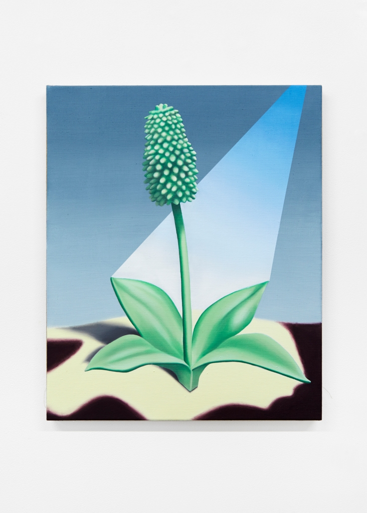 jane_plants_ 8